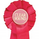 Clear Round Mini Rosettes