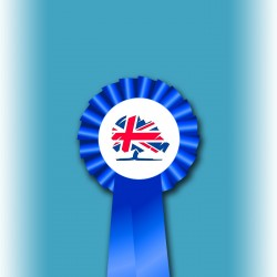 Conservative Party Single Tier Rosette