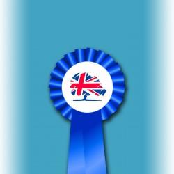 Conservative Party Single Tier Rosette