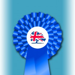 Conservative Party Three Tier Rosette