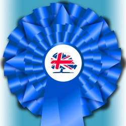 "Conservative ""Election Night Special"" Rosette"