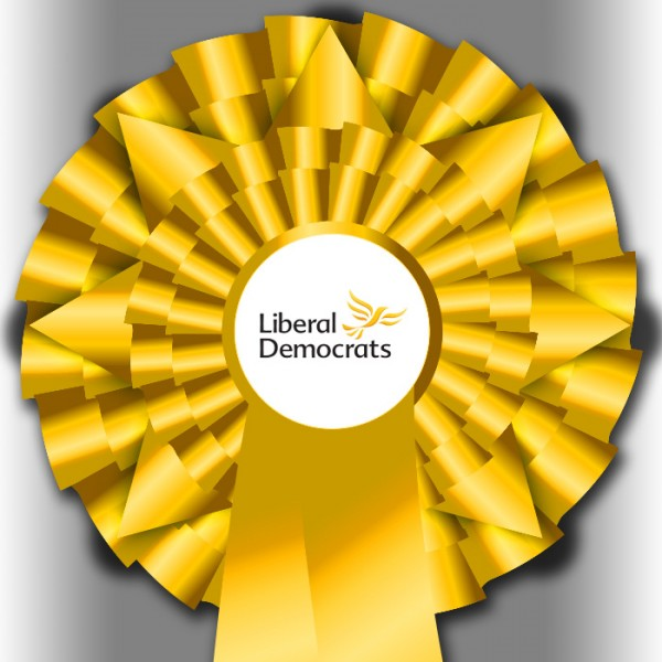 "Liberal Democrat ""Election Night Special"" Rosette"