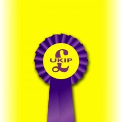UKIP Party Single Tier Rosette