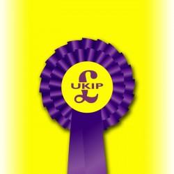 UKIP Two Tier Rosette