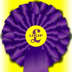 """UKIP """"Election Night Special"""" Rosette"""