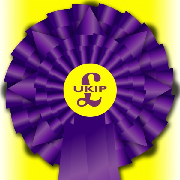 "UKIP ""Election Night Special"" Rosette"